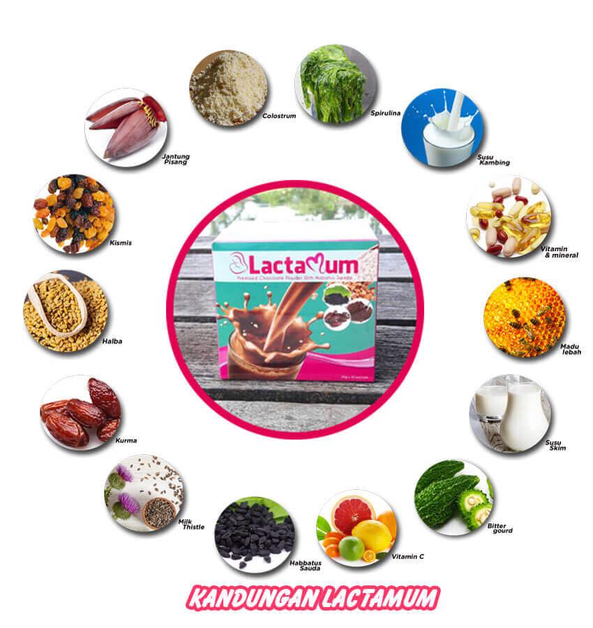 kandungan lactamum milk booster halal